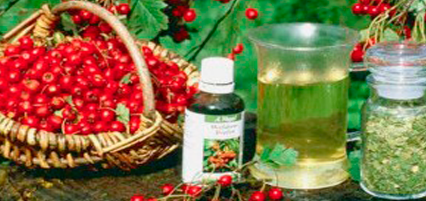 starinaia_medicina