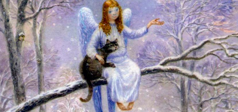 kot_i_angel